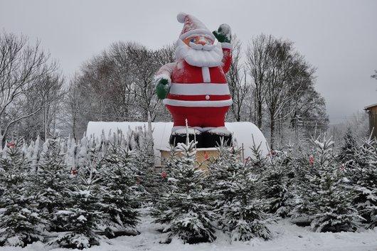 Der Weihnachtsmann der Weihnachtsbaum-Erlebniswelt