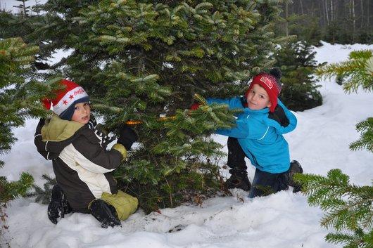 2 Kinder Weihnachtsbaum