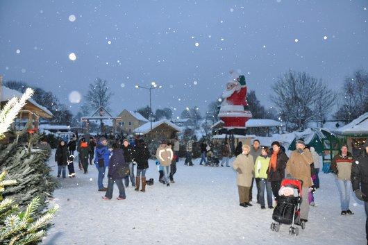 Weihnachtsbaum Platz